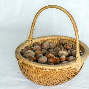nuts-651071_640